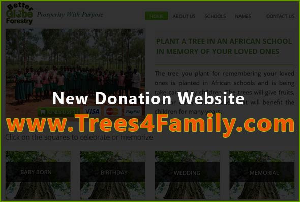 New Donation Website: Trees4Family.com