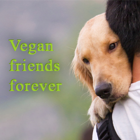 Vegan friends forever - man hugging dog