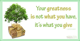 Your greatness is not what you have, it